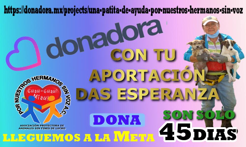 45 DIAS DONADORA