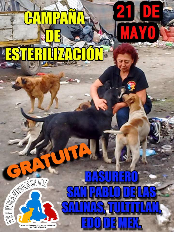 SAN PABLO 21 DE MAYO