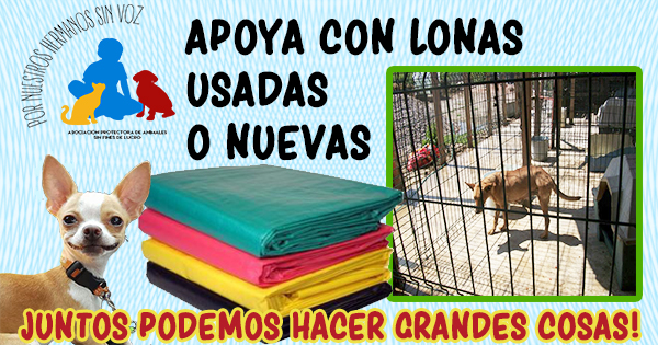 LONAS2