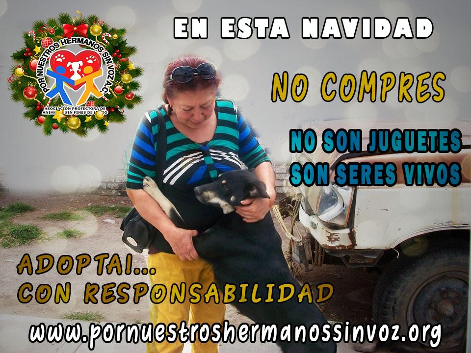 NO COMPRES