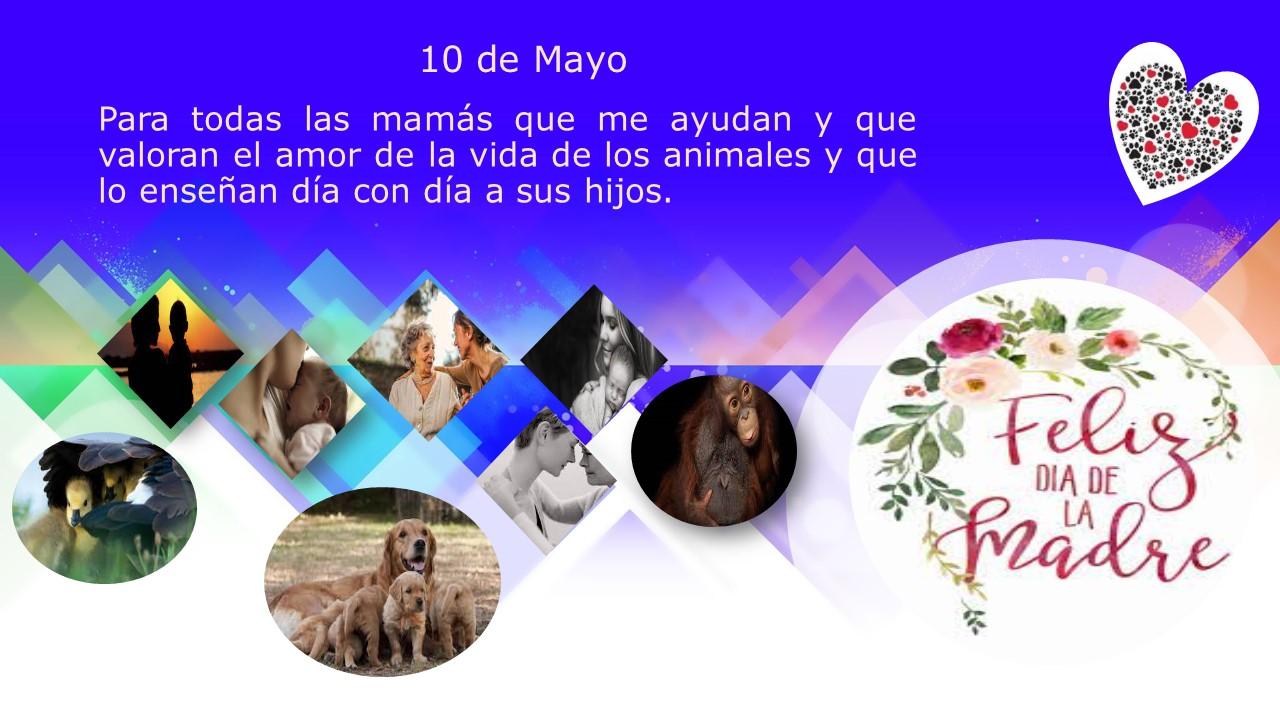 10 de mayo